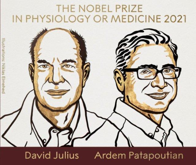 premio-nobel-medicina-2021